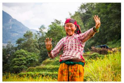 Foto en Jpg descarregable per a us personal - Genial senyora a Turdi - Gyachchok (districte de Gorkha)